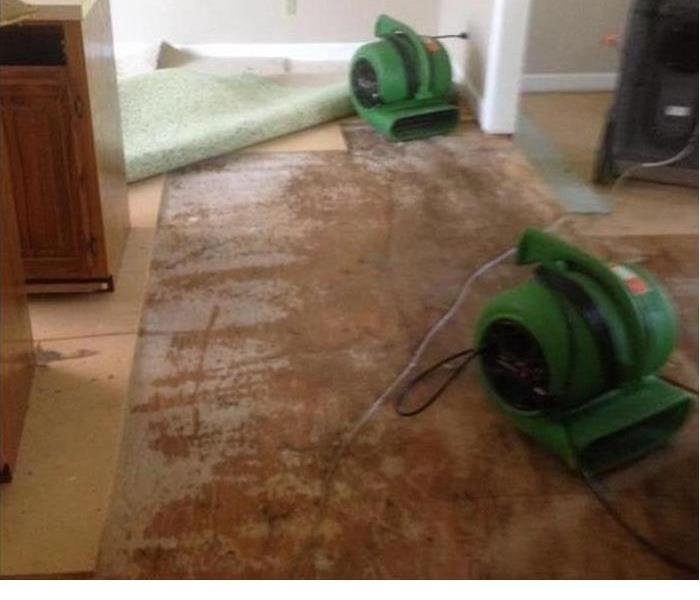 wood subfloor covered in water damage with two green air movers setup